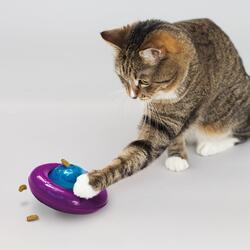 Kong Infused Cat Gyro Kediotlu ve Zilli Kedi Oyun Topu - Thumbnail
