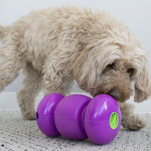 Kong Ödüllü Köpek Oyuncağı, Replay S 17cm