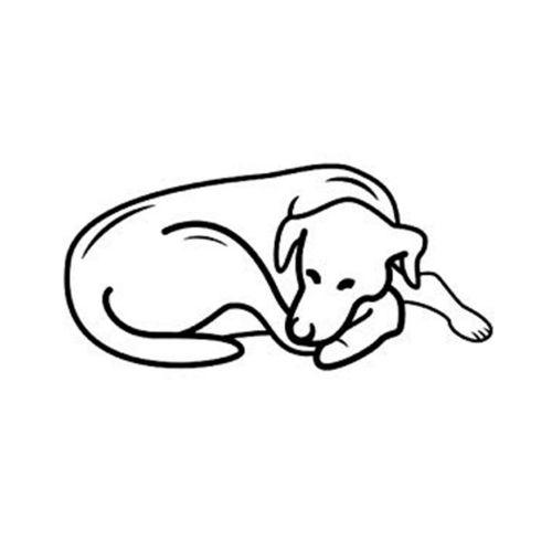 Pet Comfort Alpha Mirandus 33 Kedi ve Köpek Yatağı 50x60cm