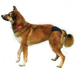 Trixie Hijyenik Köpek Külodu S-M 32–39 cm, Siyah - Thumbnail