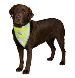 Trixie - Trixie Köpek Bandanası L-XL 42-60 cm