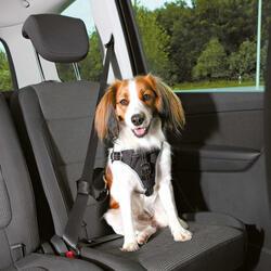 Trixie - Trixie Köpek Emniyet Kemeri ve Göğüs Tasması, S-M:40-55cm/17mm, Siyah