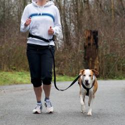 Trixie - Trixie Köpek Koşu Yürüyüş Bel Kemeri Ve Kayışı