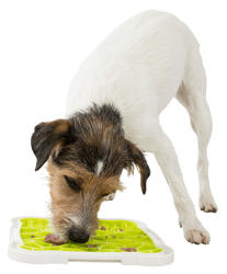 Trixie - Trixie Köpek Ödül Oyuncağı, TPR 20x20cm