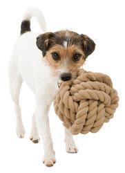 Trixie Köpek Oyuncağı, Örgü Top, ø18cm - Thumbnail