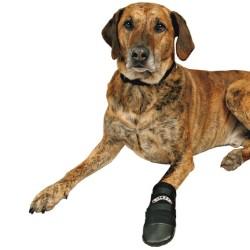 Trixie - Trixie Köpek Patiği , Neopren , 2 Adet , XL , Siyah
