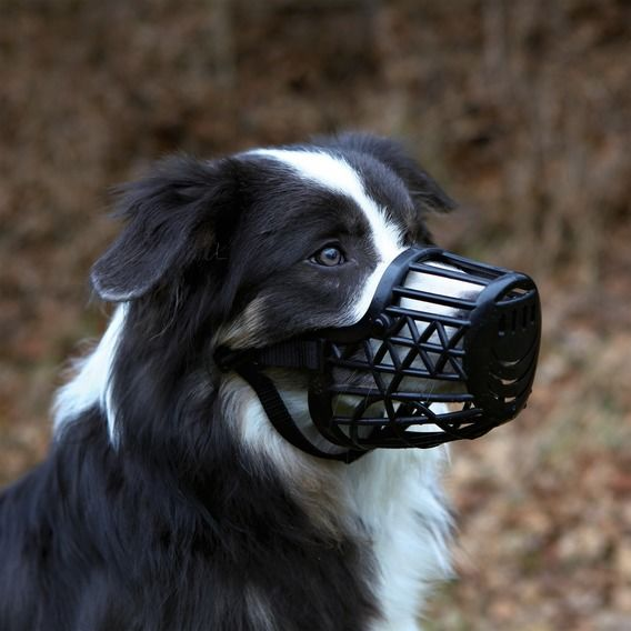 Trixie Köpek Plastik Ağızlık , S , Siyah