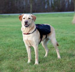 Trixie - Trixie Köpek Sırt Çantası L 29X15cm Siyah