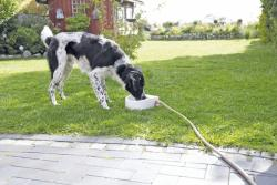 Trixie - Trixie Köpek/Kedi Suluğu, 1,5lt/ 24 x 10 x 23cm