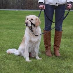 Trixie - Trixie Uzman Köpek Eğitim Tasması L-XL 37cm